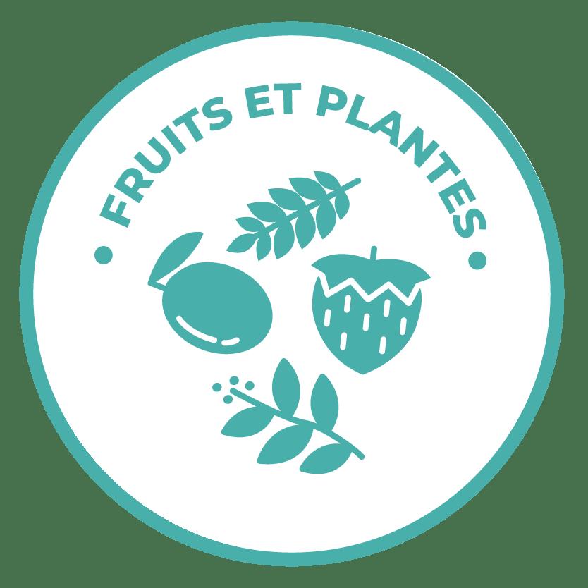 émoticône fruits et plantes